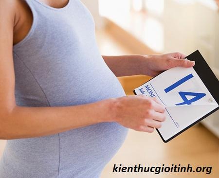 Cách tính tuổi thai nhi và dự kiến ngày sinh cho em bé, cach tinh tuoi thai va du kien sinh