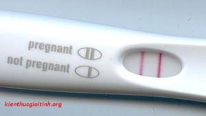 Cách sử dụng 6 loại que thử thai thông dụng