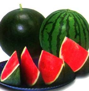 5 loại thực phẩm tốt cho phụ nữ mang thai, 5 loai thuc pham tot cho phu nu mang thai