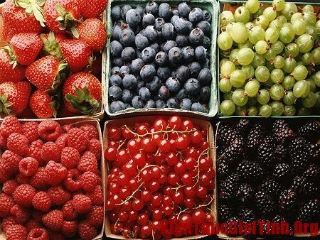 Trái cây quả mọng giúp cân bằng nội tiết tố nữ, trai cay qua mong giup can bang noi tiet to nu