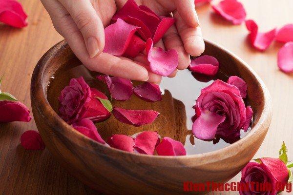 Trị môi khô bằng hoa hồng