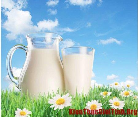 Cách chọn sữa bầu tốt