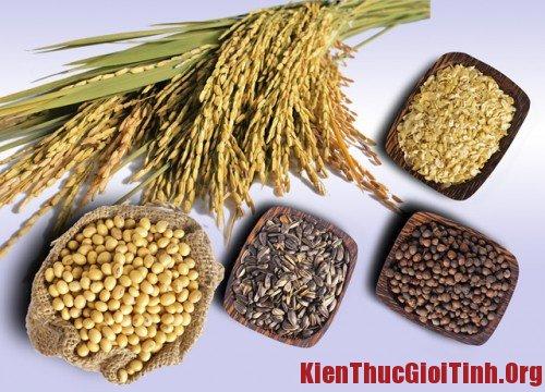 Các loại ngũ cốc giúp chống xuất tinh sớm