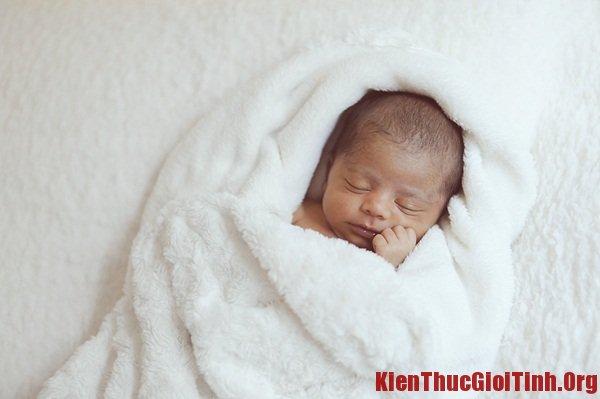 Quá trình phát triển của thai nhi qua từng tháng tuổi