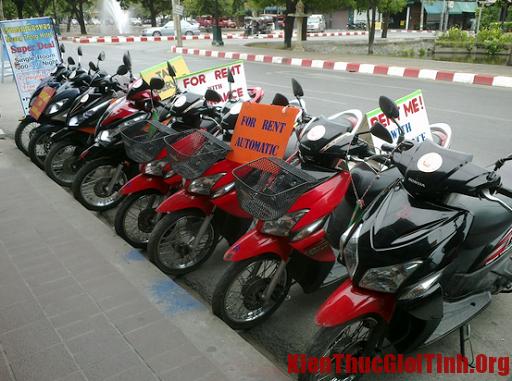 Địa chỉ cho thuê xe ô tô, xe máy, xe đạp đi du lịch Đà Nẵng