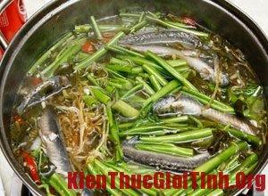 Những món ăn ngon, bổ từ cá giúp trị chứng bất lực ở nam giới
