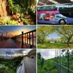 Những hoạt động du lịch và trải nghiệm miễn phí hấp dẫn nhất Singapore