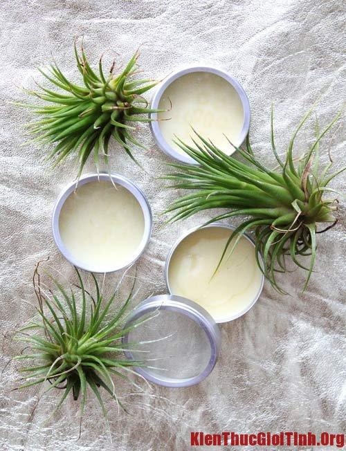 Công thức pha chế nước hoa dạng sáp thơm an toàn, tiết kiệm tại nhà