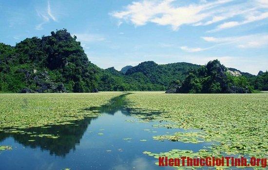 Một số địa điểm cắm trại, dã ngoại lý tưởng ở Hà Nội bạn không nên bỏ lỡ